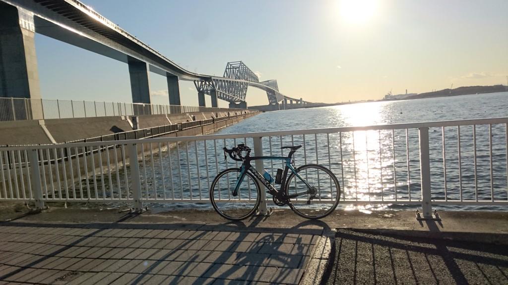 東京ゲートブリッジを望む