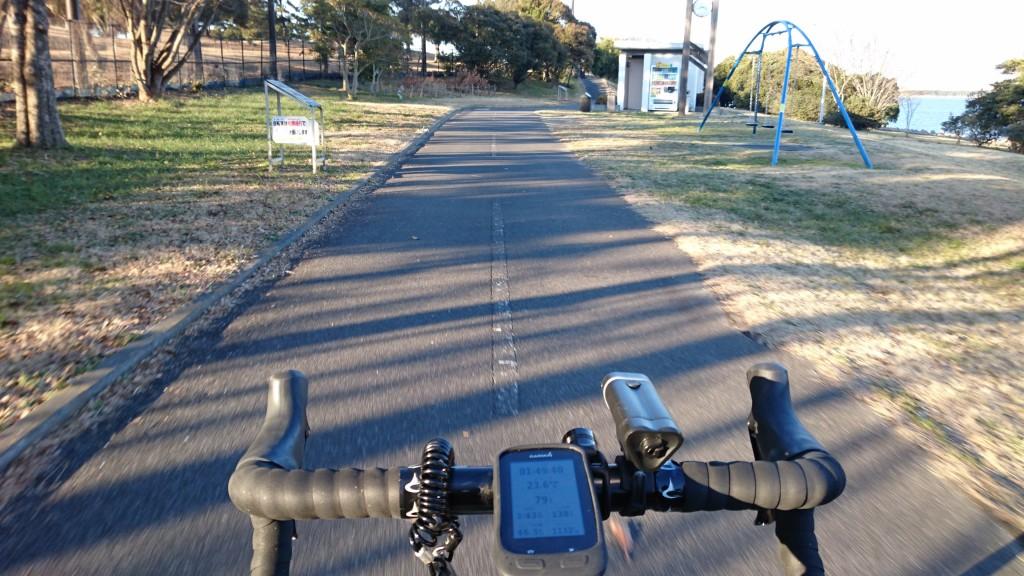 若洲海浜公園サイクリングロード