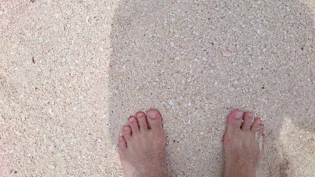 砂浜はサンゴからできた白砂