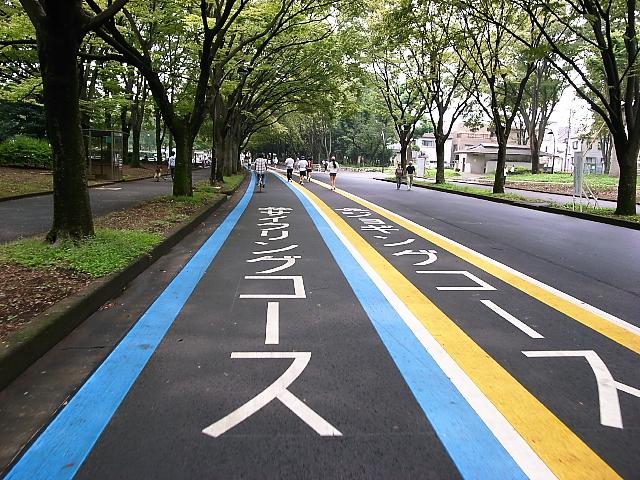駒沢公園サイクリングロード