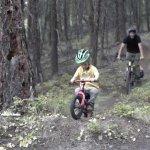 スペシャライズドのキックバイク 「HOTWALK」エアレスタイヤでパンク無し!