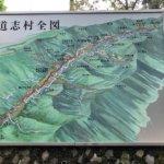 【グラベル】道志みち5つの林道・室久保線、越路線、田代線、椿線、大室指線をフル満喫周回コース[Route30]